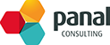 Panal Consulting